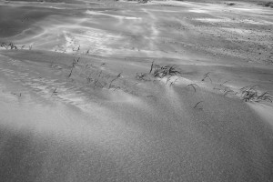 Fotograaf Utrecht_strand